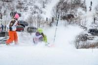 II-ой этап Кубка Тулы по сноуборду., Фото: 70