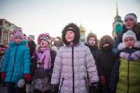 В Тульском кремле открылась новогодняя елка, Фото: 44