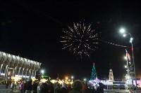 В Туле завершились новогодние гуляния, Фото: 40