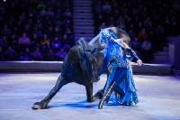 Туляков приглашают на новогоднее представление «Ёлка в цирке», Фото: 89