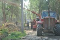 В Туле проводят работы по благоустройству зон отдыха. 26 июля 2014 год, Фото: 9