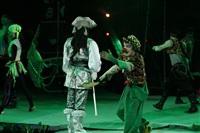 В Тульском цирке прошла премьера аква-шоу, Фото: 12
