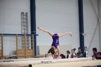 Соревнования по спортивной гимнастике на призы Заслуженных мастеров спорта , Фото: 72