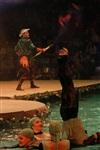 В Тульском цирке прошла премьера аква-шоу, Фото: 15