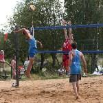 Пляжный волейбол в Барсуках, Фото: 100