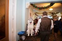 Выставка собак в Туле, 29.11.2015, Фото: 84