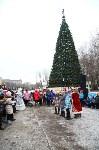 Открытие елки на площади искусств. 19.12.2014, Фото: 73