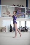 Соревнования по спортивной гимнастике на призы Заслуженных мастеров спорта , Фото: 43