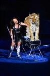 Цирковое шоу, Фото: 137