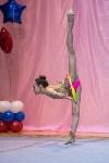 Соревнования по художественной гимнастике 31 марта-1 апреля 2016 года, Фото: 118
