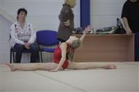 Открытый турнир по спортивной гимнастике. 23-30 ноября 2013, Фото: 5