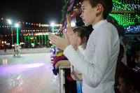 Туляки отметили Старый Новый год ледовым шоу, Фото: 33