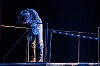 """Премьера """"Грозы"""" в Драмтеатре. 12.02.2015, Фото: 37"""