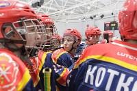 В Туле открылись Всероссийские соревнования по хоккею среди студентов, Фото: 24