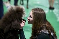 Выставка собак в Туле 14.04.19, Фото: 53