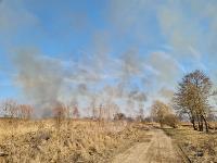 В Федоровке огонь с горящего поля едва не перекинулся на дома, Фото: 28