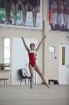 Соревнования по спортивной гимнастике на призы Заслуженных мастеров спорта , Фото: 50
