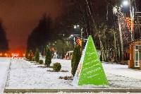Украшение парка к Новому году, 15.12.2015 , Фото: 12