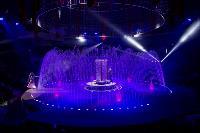 Шоу фонтанов «13 месяцев» в Тульском цирке – подарите себе и близким путевку в сказку!, Фото: 100