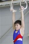 Первый этап Всероссийских соревнований по спортивной гимнастике среди юношей - «Надежды России»., Фото: 10