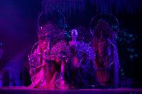 Шоу фонтанов «13 месяцев»: успей увидеть уникальную программу в Тульском цирке, Фото: 69