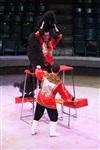 Цирк «Вива, Зорро!» в Туле , Фото: 4