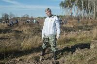 посадка леса в Одоевском лесничестве, Фото: 13