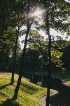 Летний день в богородицком парке, Фото: 8