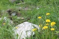В тульском Заречье жители год добиваются ликвидации ядовитой свалки, Фото: 22