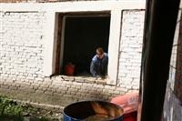 Галина Ратникова проверяет готовность узловских школ к учебному году, Фото: 11