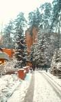 Едем зимой в санаторий, Фото: 1