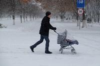 Снежная Тула. 15 ноября 2015, Фото: 35