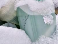 Незаконная свалка химикатов в Туле, Фото: 14