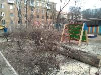 Сильный ветер в Туле повалил деревья, Фото: 4