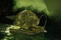 В Тульском цирке прошла премьера аква-шоу, Фото: 75