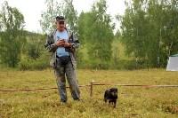 Выставка охотничьих собак под Тулой, Фото: 6