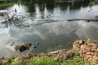 Отравленный пруд в Апасово, Фото: 2