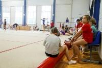 Спортивная гимнастика в Туле 3.12, Фото: 45