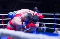 В Туле прошли финальные бои Всероссийского турнира по боксу, Фото: 101