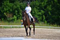 В Ясной поляне стартовал турнир по конному спорту, Фото: 98