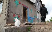 В Плеханово продолжается снос незаконных цыганских построек, Фото: 52