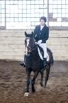 Открытый любительский турнир по конному спорту., Фото: 36