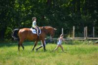 В Ясной поляне стартовал турнир по конному спорту, Фото: 140