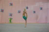 IX Всероссийский турнир по художественной гимнастике «Старая Тула», Фото: 36