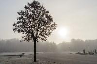 Ледяное утро в Центральном парке, Фото: 30