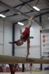 Соревнования по спортивной гимнастике на призы Заслуженных мастеров спорта , Фото: 78