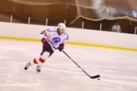 Легенды советского хоккея в Алексине., Фото: 98