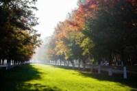 Центральный парк, утро, осень, Фото: 48