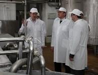 Алексей Дюмин посетил Узловский молочный комбинат, Фото: 12