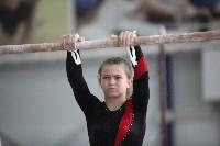 Соревнования по спортивной гимнастике на призы Заслуженных мастеров спорта , Фото: 35